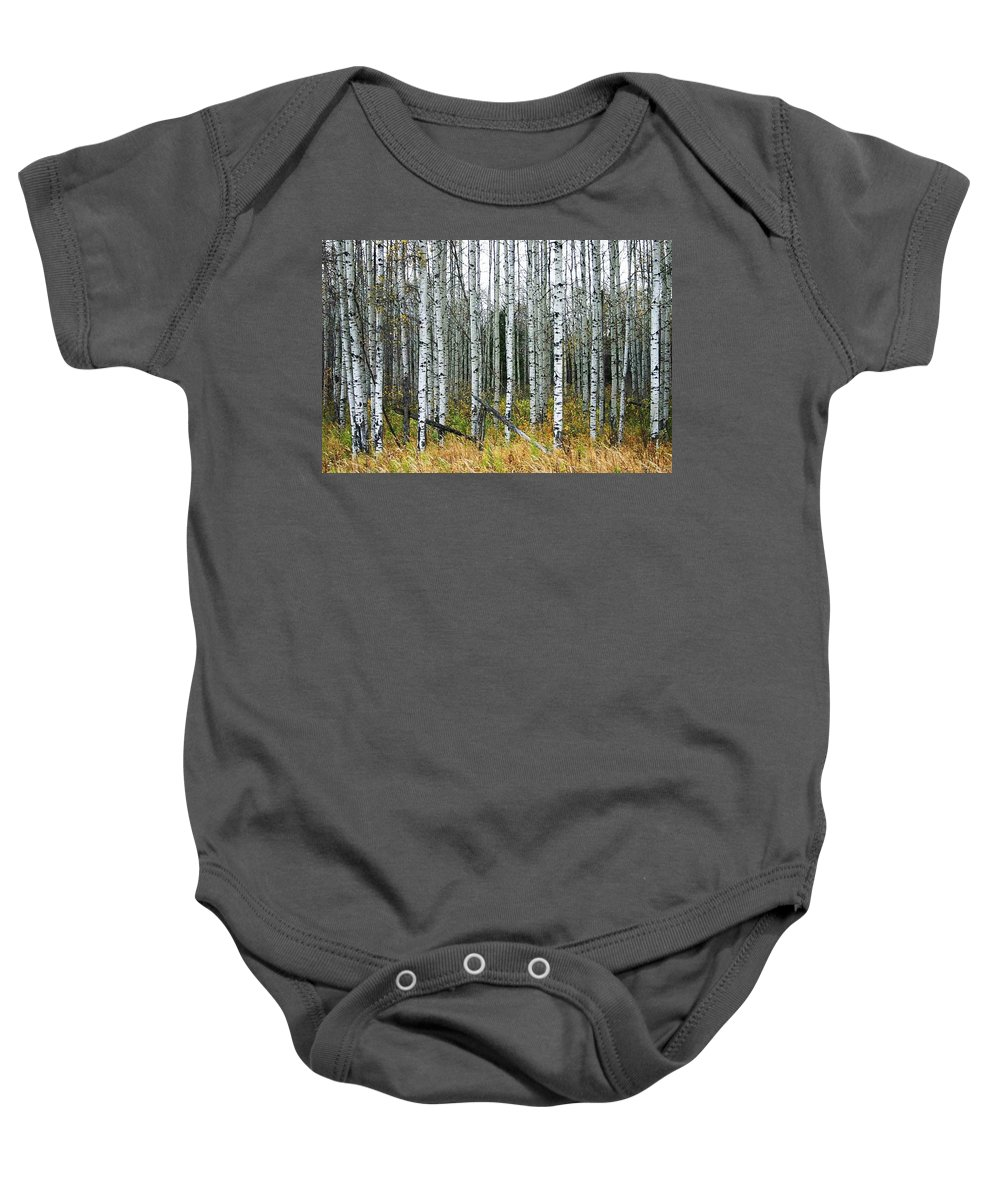 Aspens Baby Onesie featuring the photograph Aspens by Nelson Strong