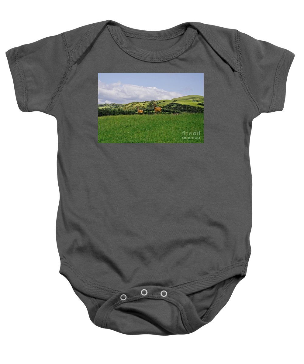 Beecraigs Baby Onesie featuring the photograph At The Hill Bottom. by Elena Perelman