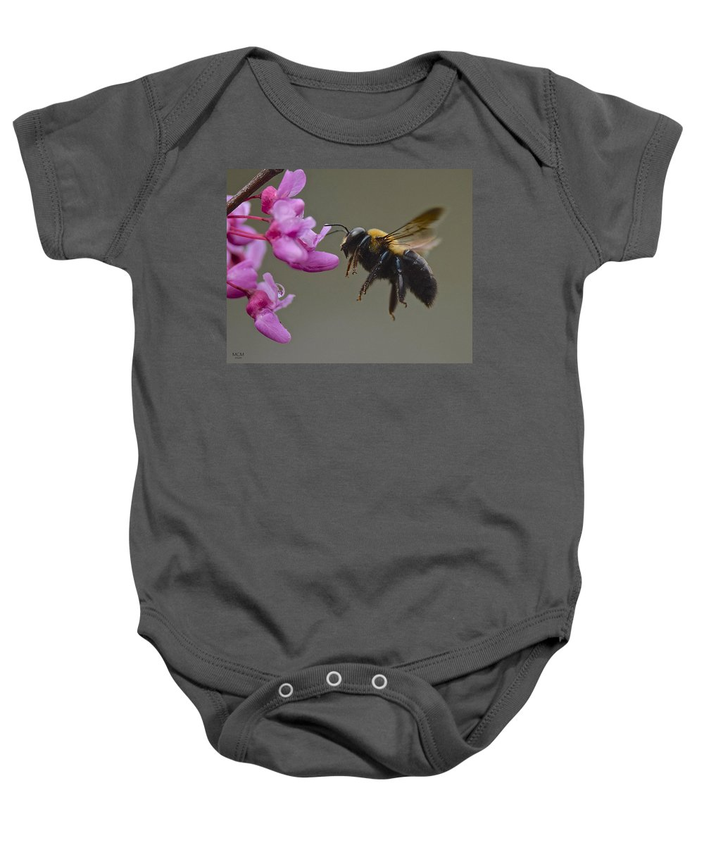 Bumblebee Baby Onesie featuring the photograph At Work by MCM Photography