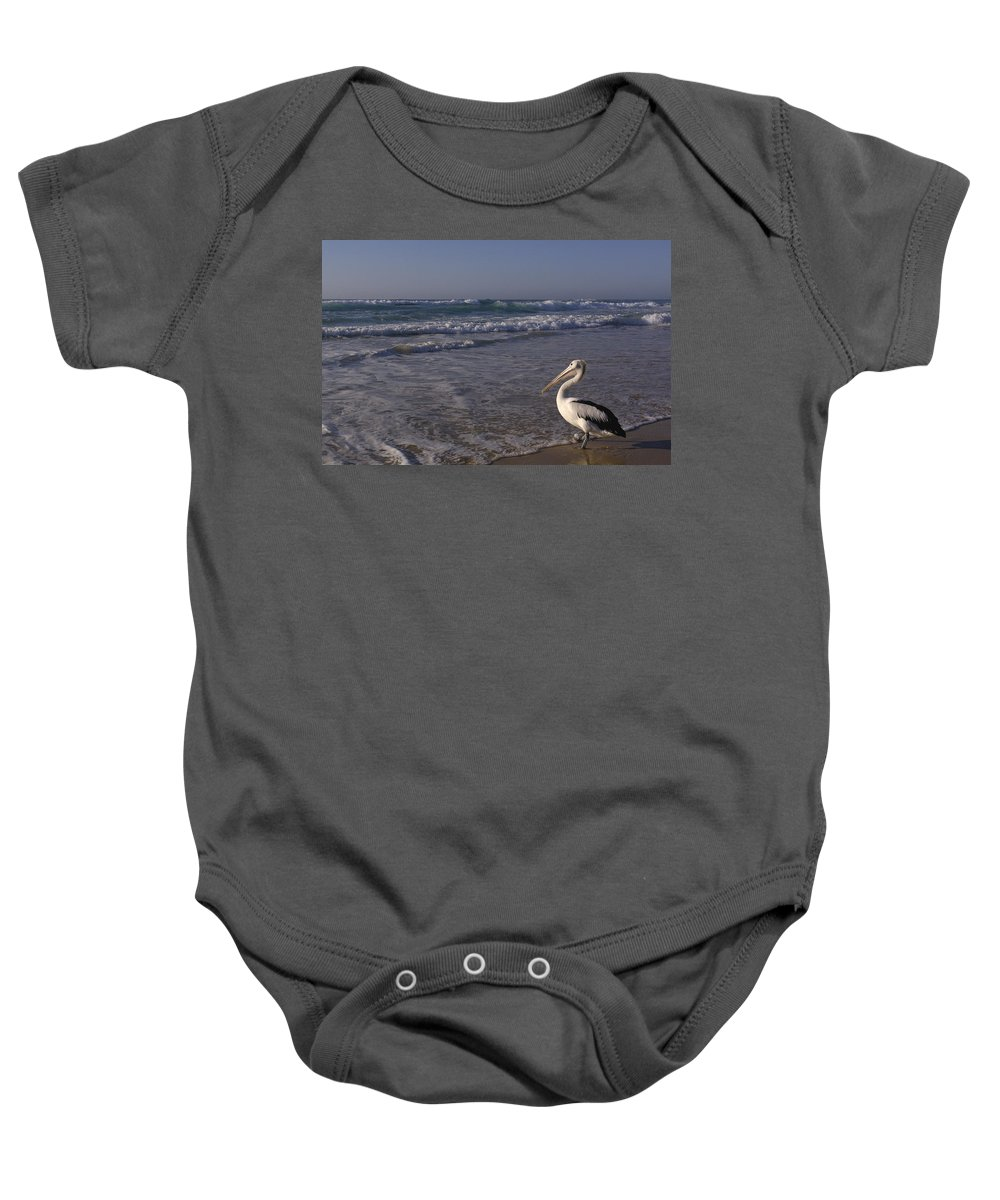 00210619 Baby Onesie featuring the photograph Australian Pelican And Surf by Pete Oxford