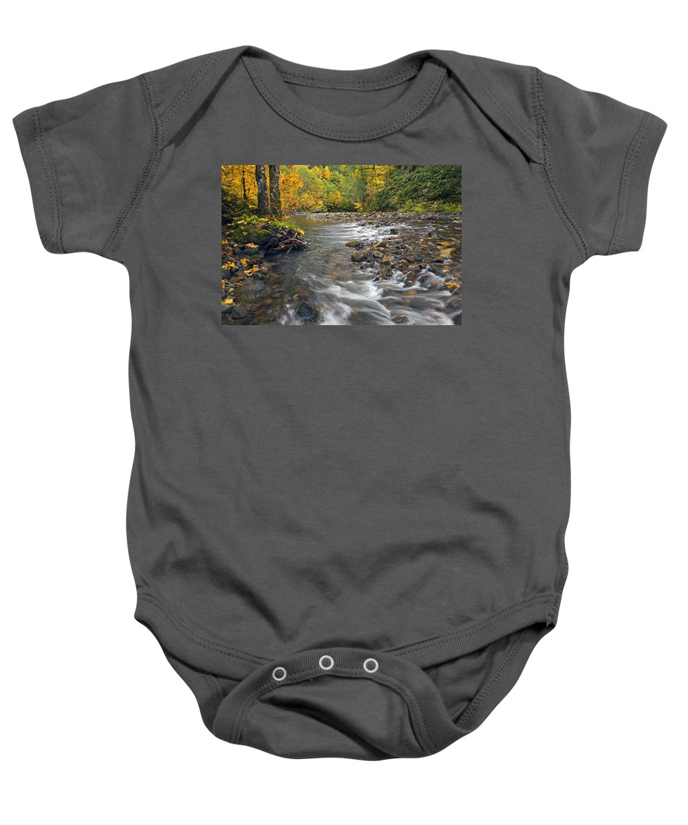 Fall Baby Onesie featuring the photograph Autumn Meander by Mike Dawson