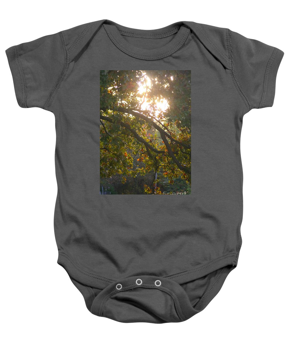 Autumn Baby Onesie featuring the photograph Autumn Morning Glow by Nadine Rippelmeyer