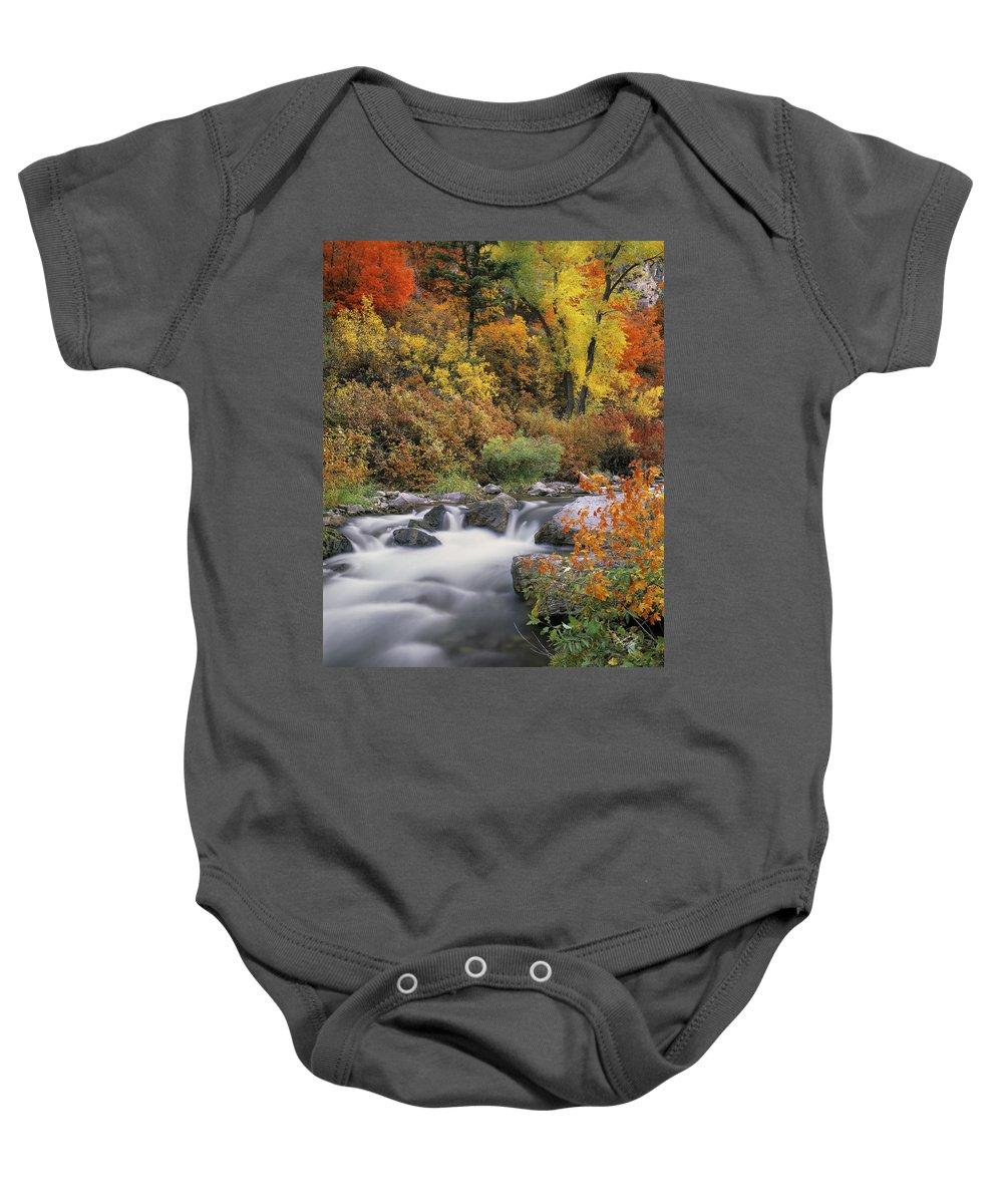 Palisades Creek Baby Onesie featuring the photograph Autumn Splendor by Leland D Howard