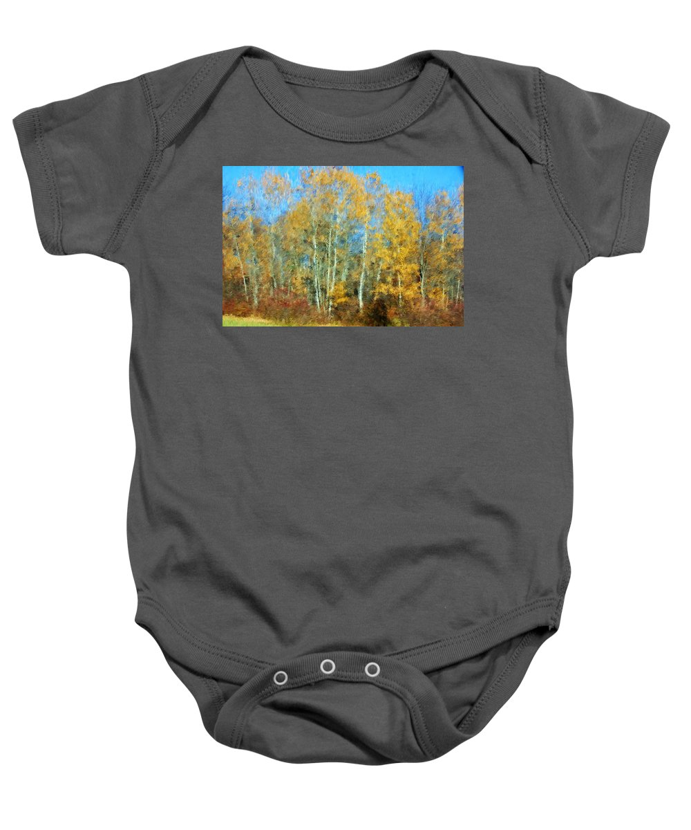 Baby Onesie featuring the photograph Autumn Woodlot by David Lane