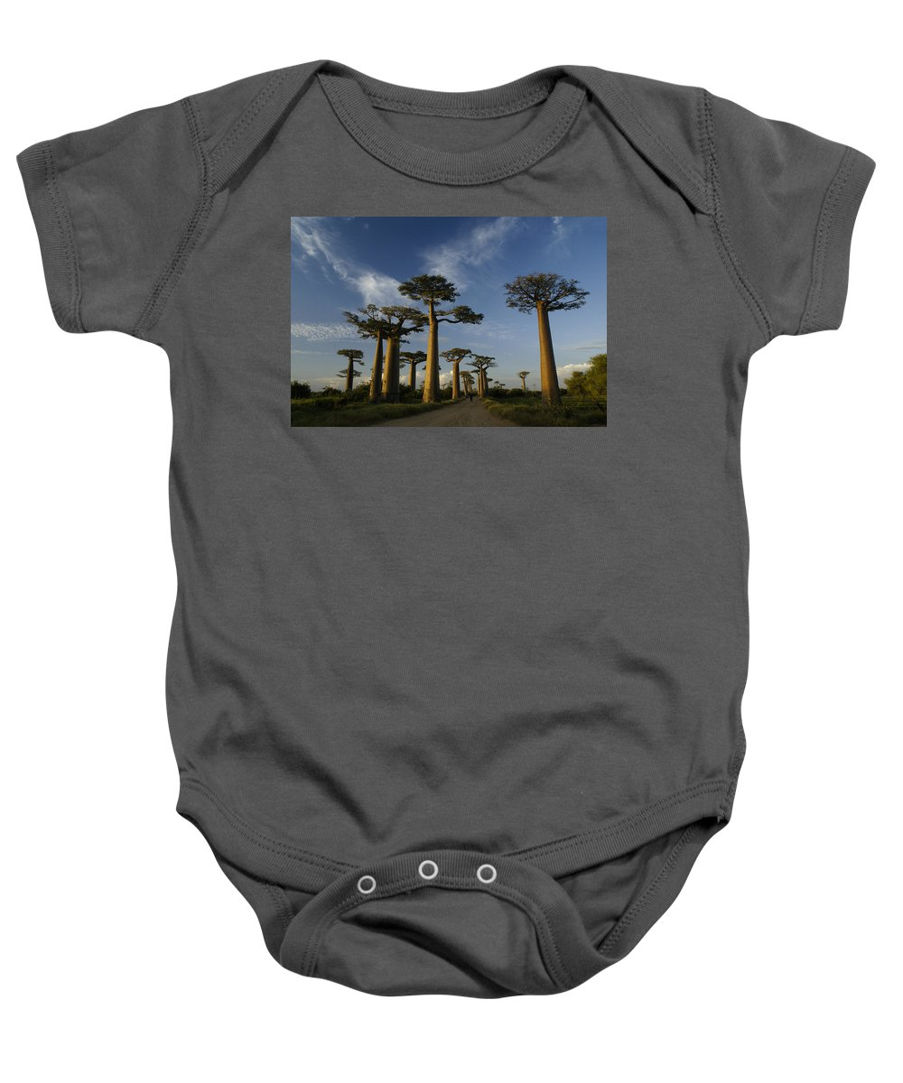 Madagascar Baby Onesie featuring the photograph Avenue Des Baobabs by Michele Burgess