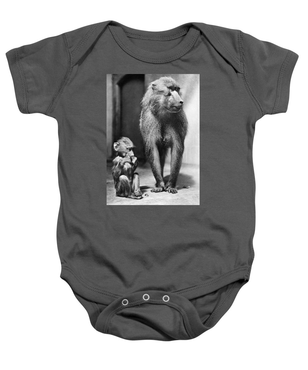 20th Century Baby Onesie featuring the photograph Baboon by Granger