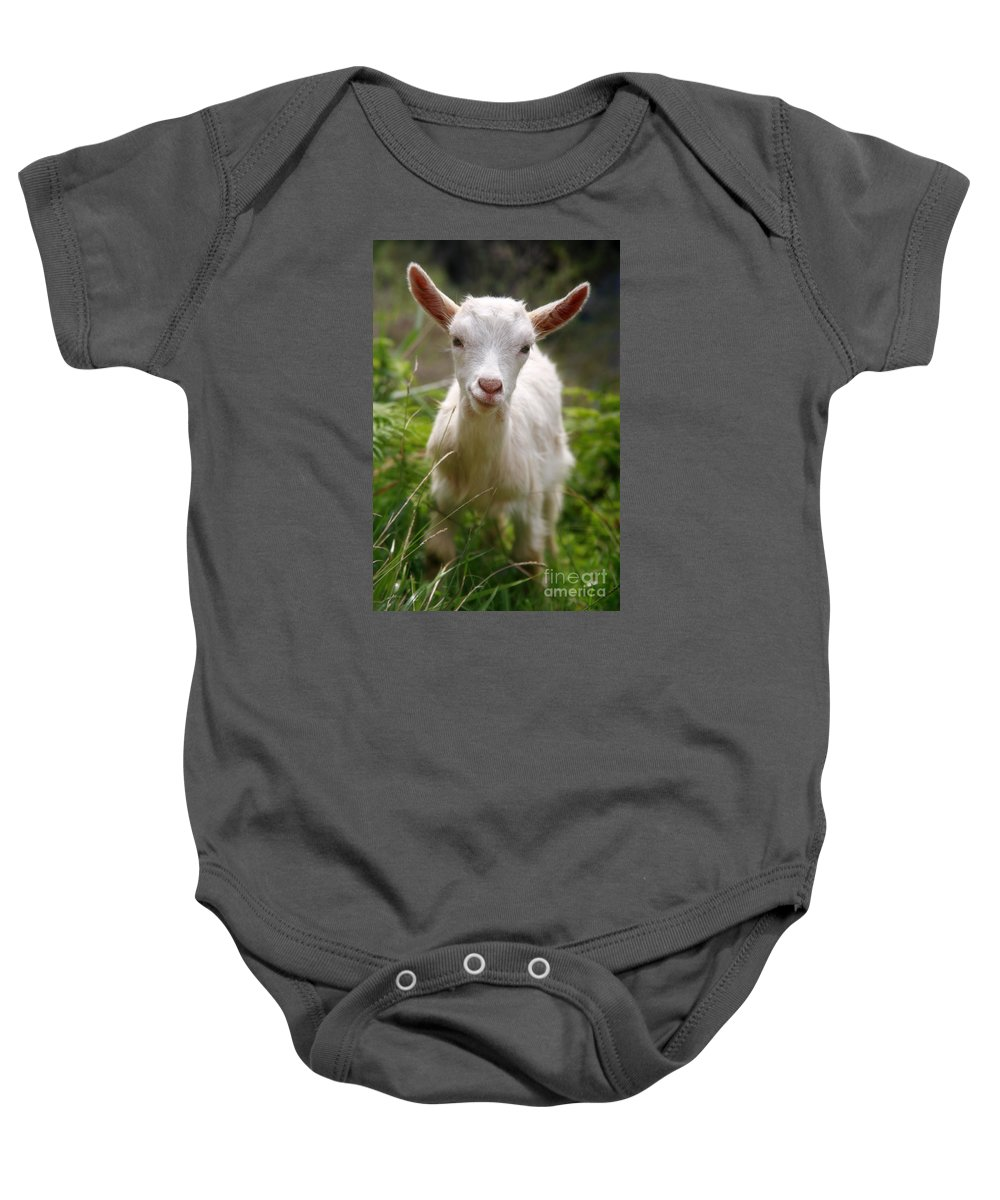 Animals Baby Onesie featuring the photograph Baby Goat by Gaspar Avila
