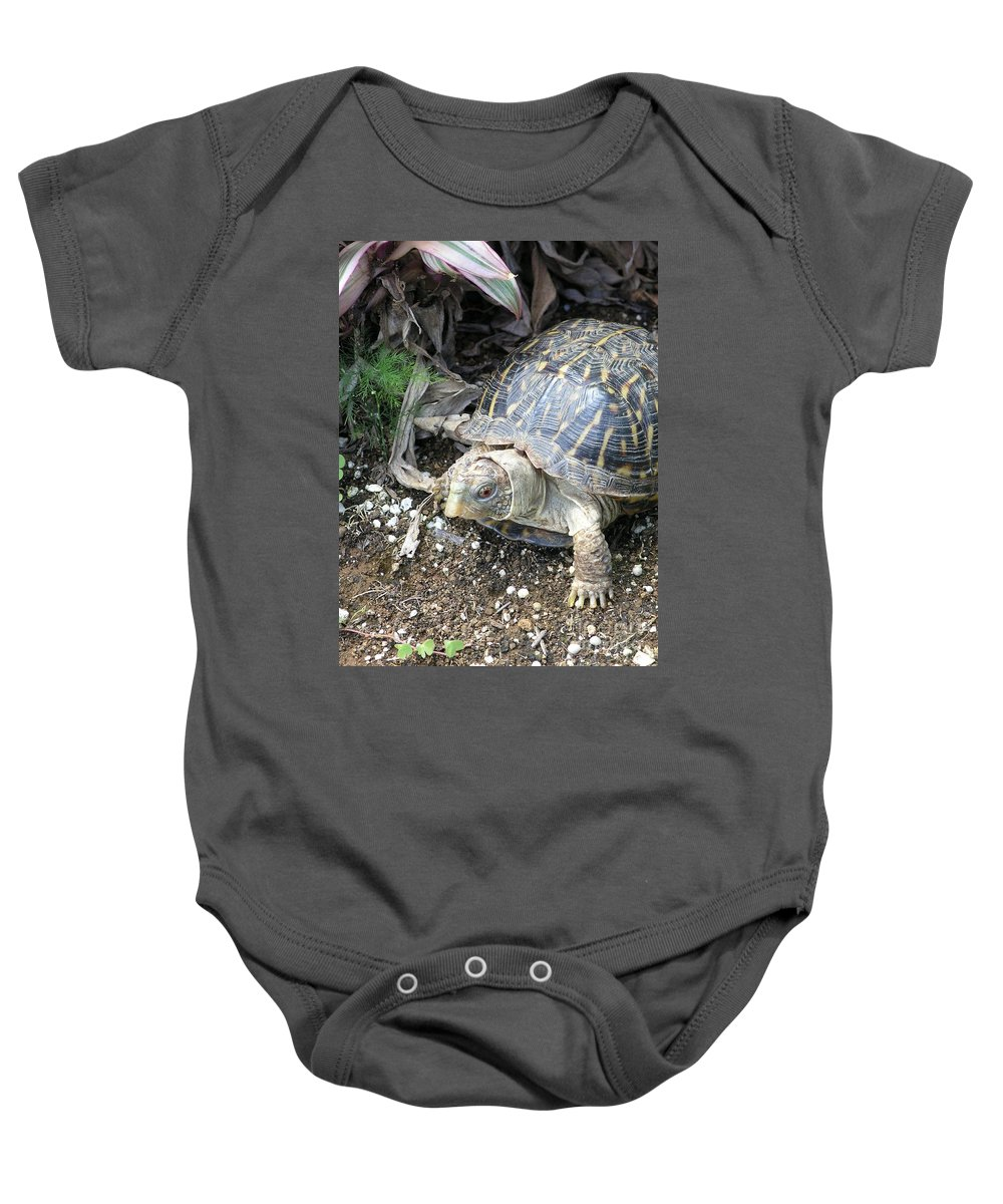 Mary Deal Baby Onesie featuring the photograph Baby Tortoise by Mary Deal