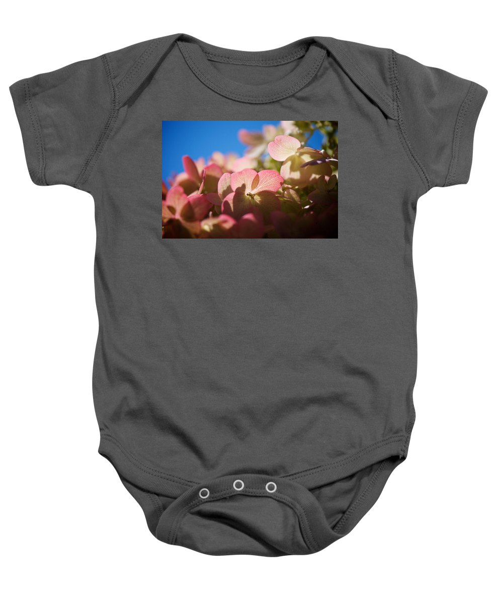 Hydrangea Baby Onesie featuring the photograph Backlit Hydrangea by Lisa Knechtel