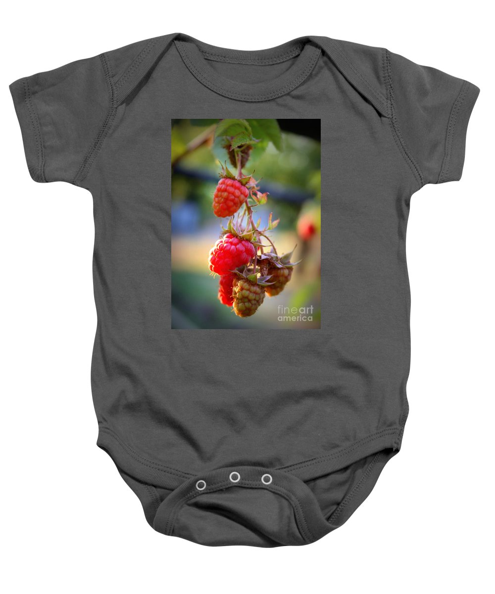 Food And Beverage Baby Onesie featuring the photograph Backyard Garden Series - The Freshest Raspberries by Carol Groenen