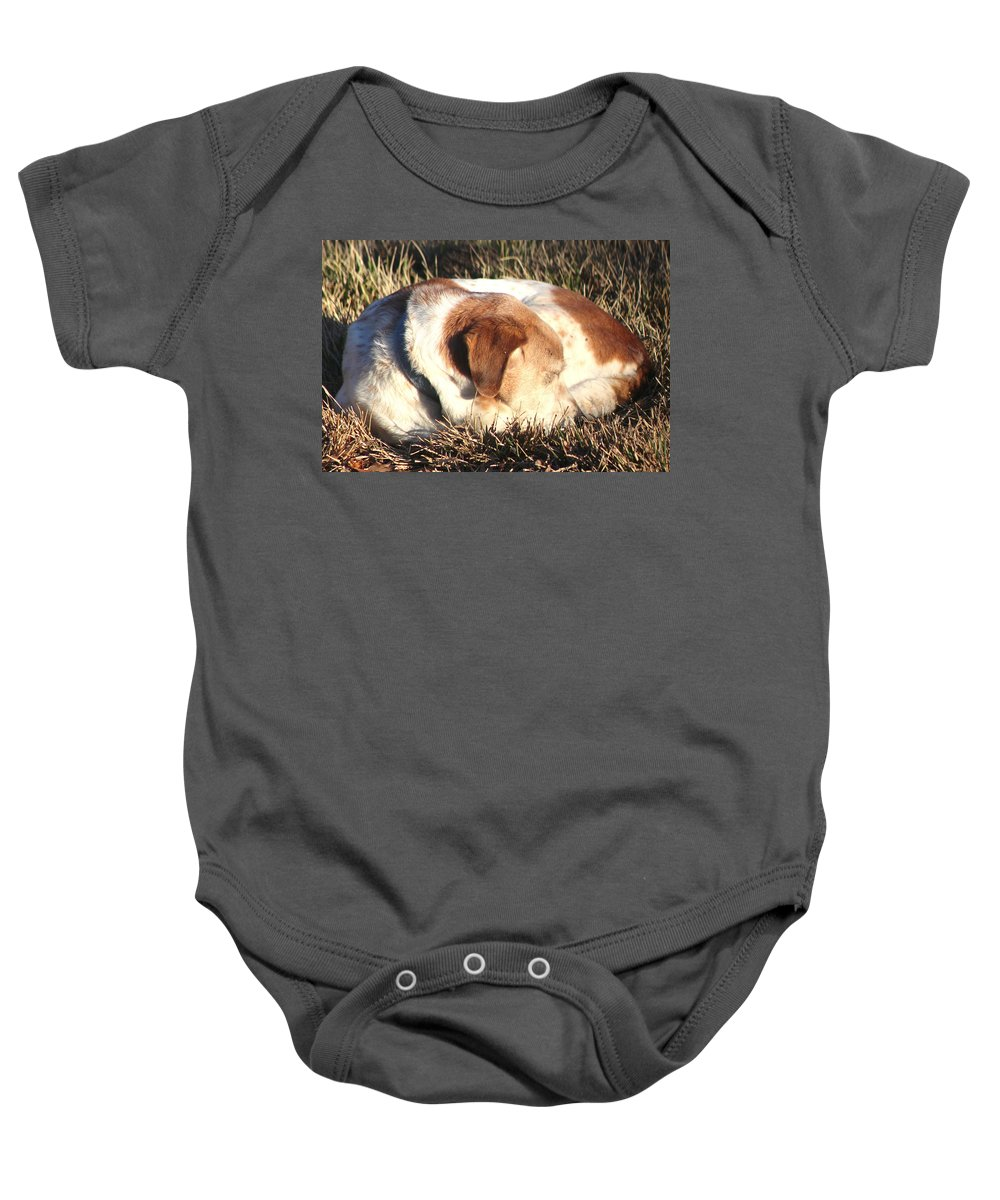 Dog Baby Onesie featuring the photograph Bailey Resting by Christopher White