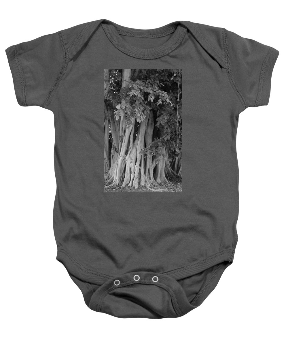 Baby Onesie featuring the photograph Banyans by Maria Bonnier-Perez