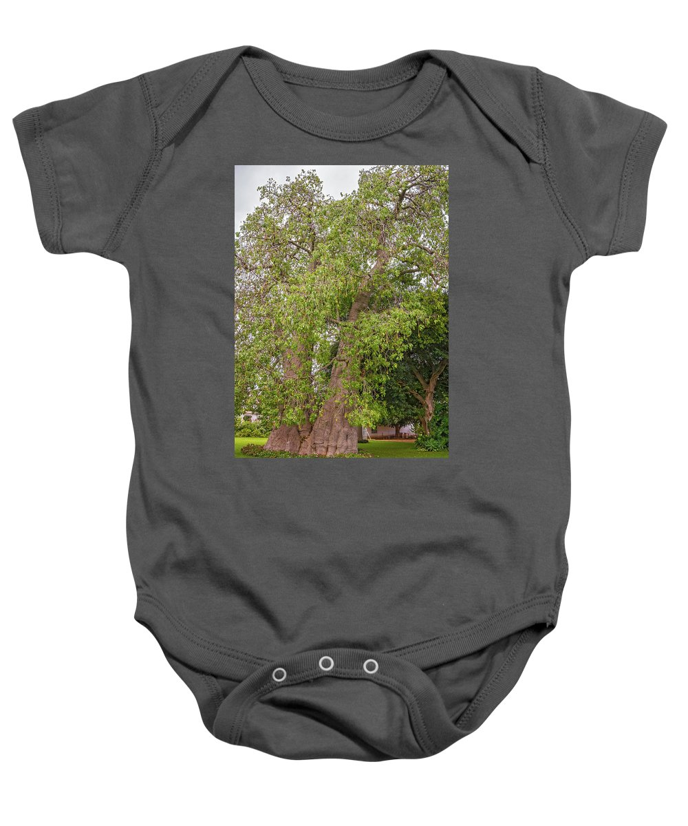 Tree Baby Onesie featuring the photograph Baobab Tree In Zambia by Marek Poplawski