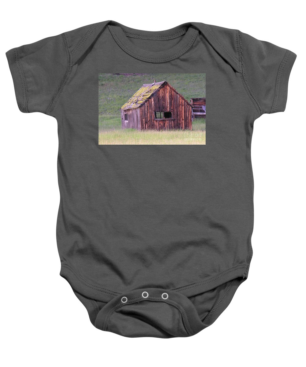 Barn Baby Onesie featuring the photograph Barm by Diane Greco-Lesser