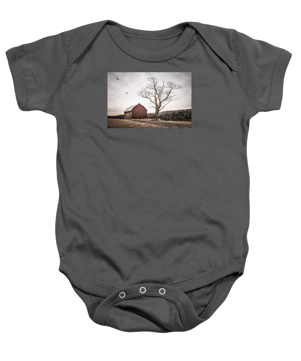 Barns Baby Onesie featuring the photograph barn and tree - New York State by Gary Heller