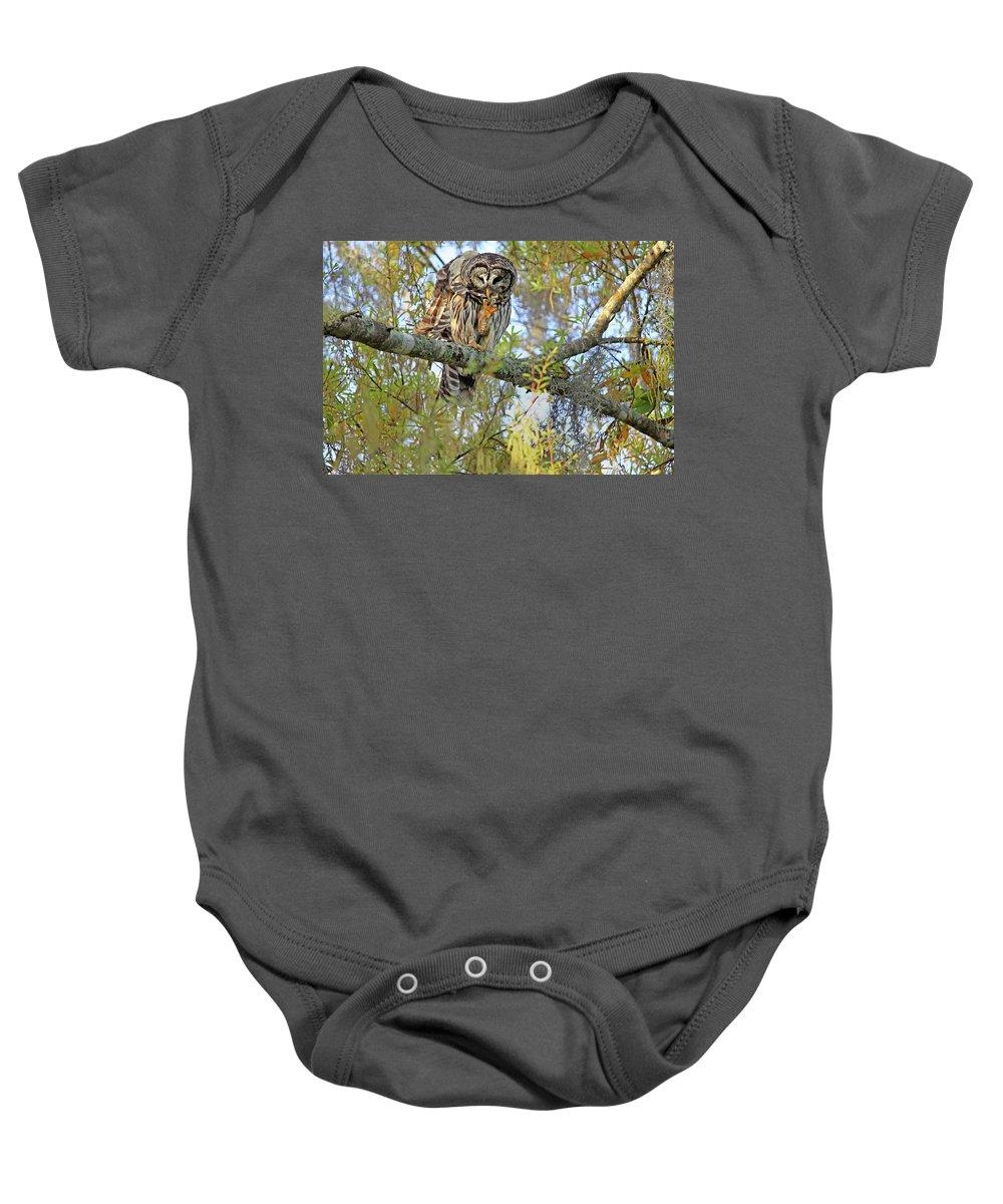 Owl Baby Onesie featuring the photograph Barred Owl by Deborah Benoit
