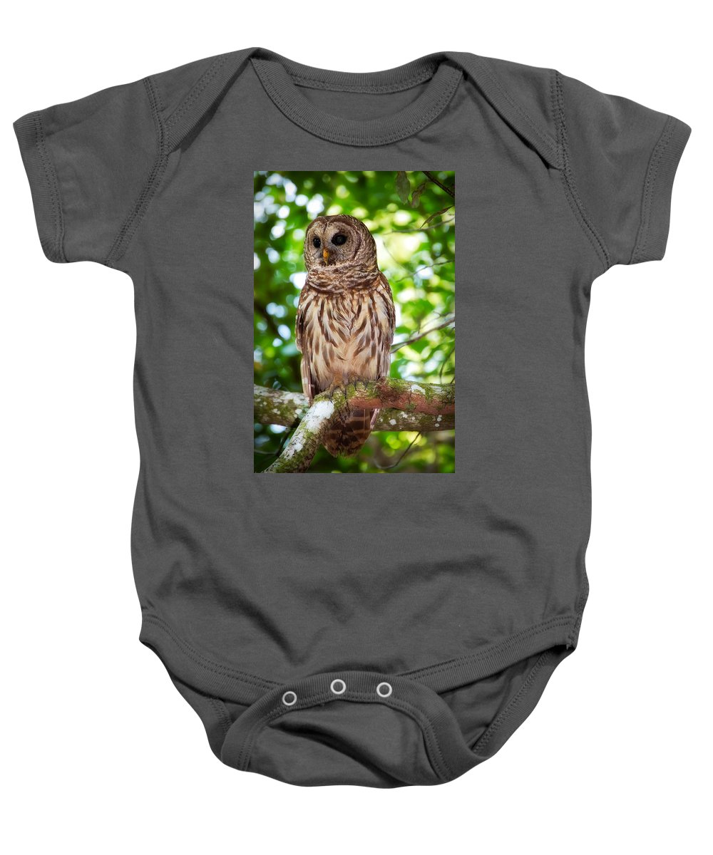 Animal Baby Onesie featuring the photograph Barred Owl by Rich Leighton