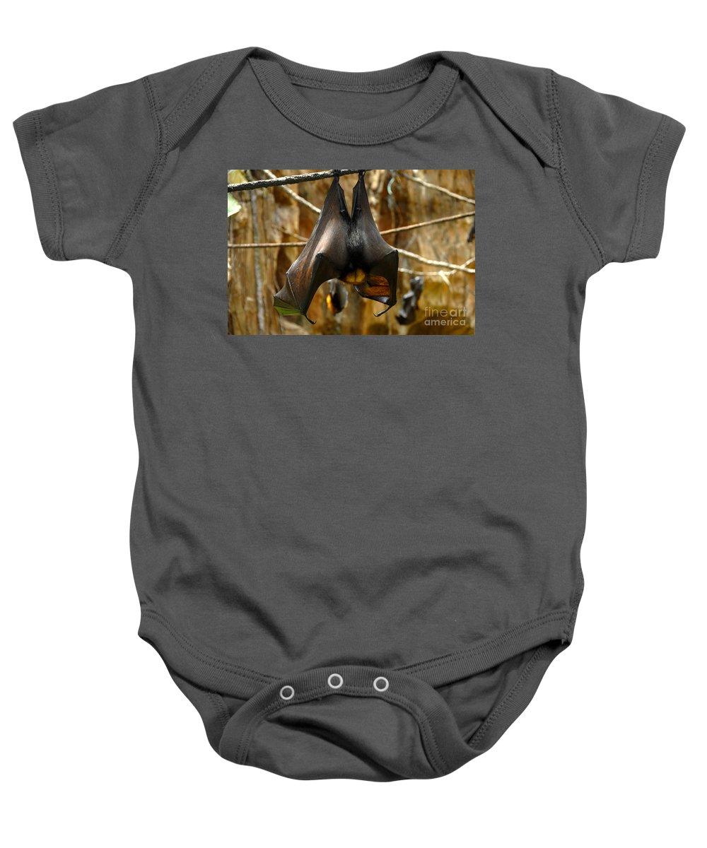 Bats Baby Onesie featuring the photograph Bats by David Lee Thompson