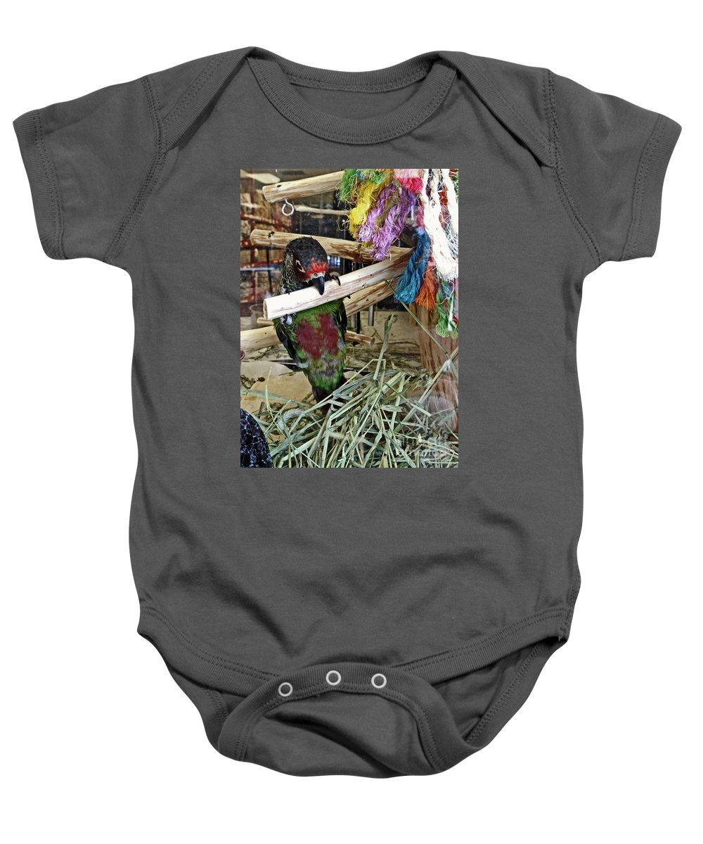 Female Parrot Baby Onesie featuring the photograph Beak Ups by Catherine Melvin