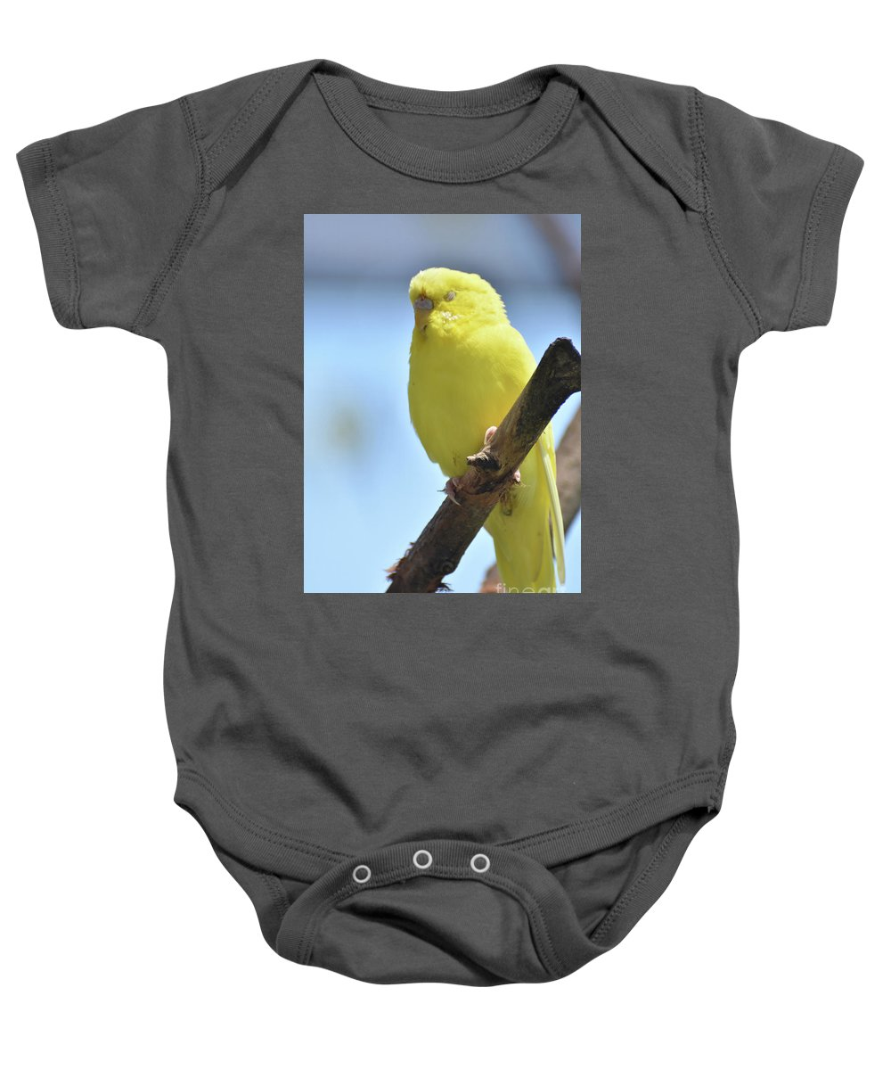 Budgie Baby Onesie featuring the photograph Beautiful Face Of A Yellow Budgie Bird by DejaVu Designs