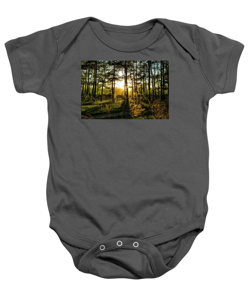 Beams Baby Onesie featuring the photograph Beautiful Forest At Sunrise by Oleg Yermolov