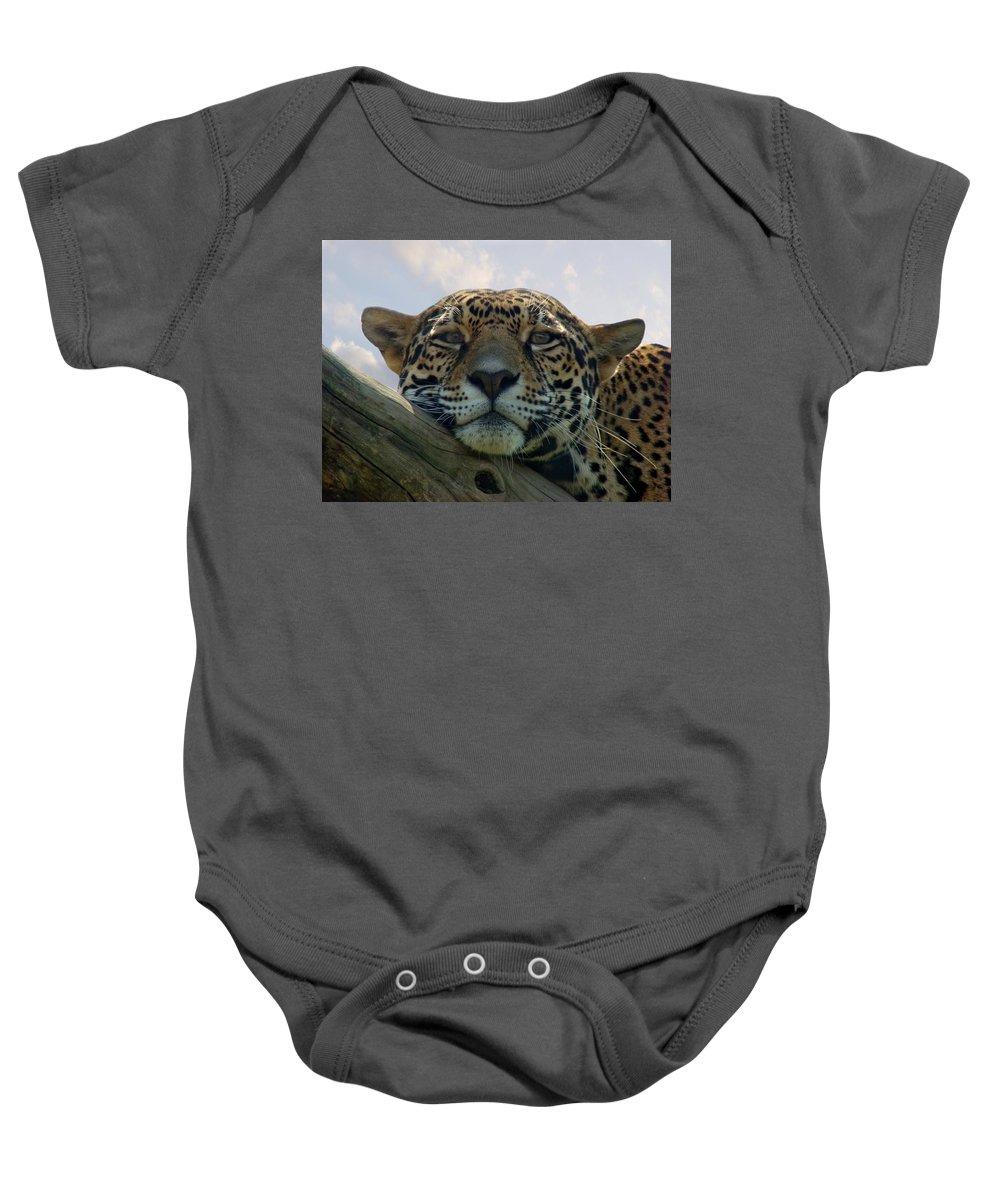 Jaguar Baby Onesie featuring the photograph Beautiful Jaguar by Sandy Keeton