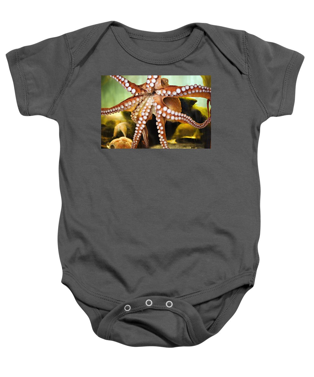 Octopus Baby Onesie featuring the photograph Beautiful Octopus by Marilyn Hunt