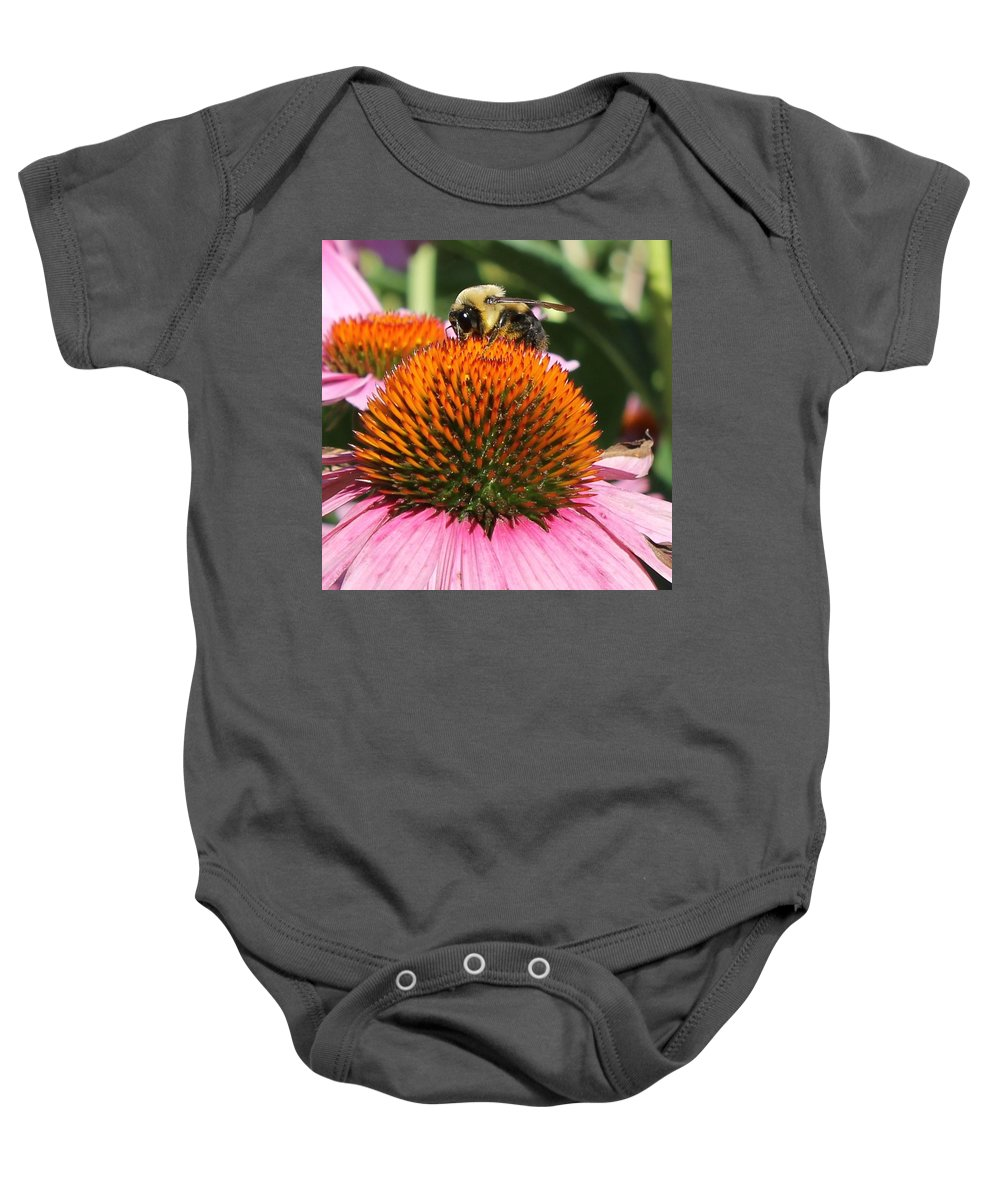 Bee Baby Onesie featuring the photograph Bee At Work by Katherine Parker