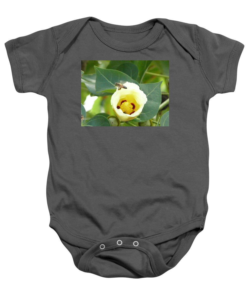 Bee Plants Tropical Baby Onesie featuring the photograph Bee Chowtime by Robert aka Bobby Ray Howle