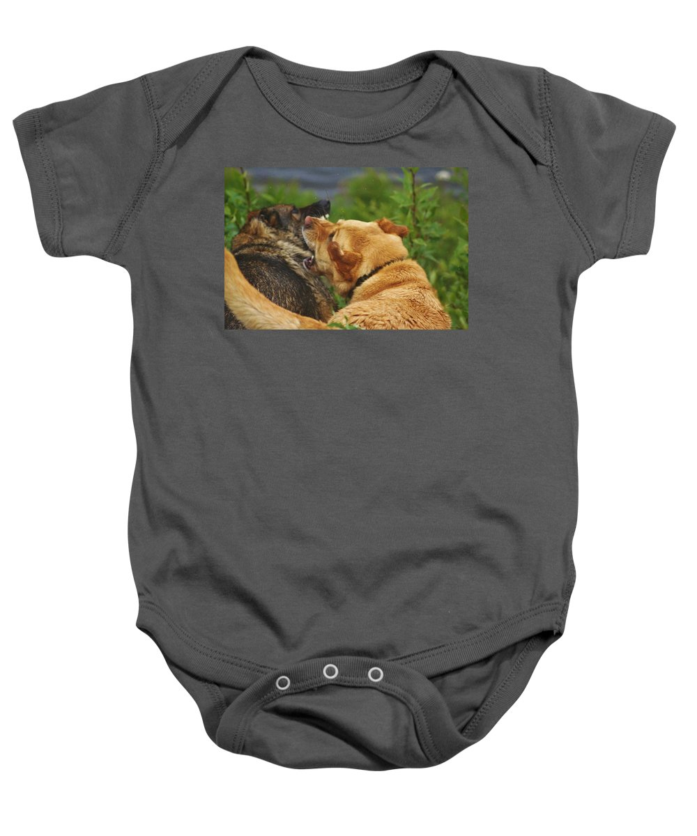 Dogs Playing Aggressively Baby Onesie featuring the photograph Best Friends by Lori Mahaffey