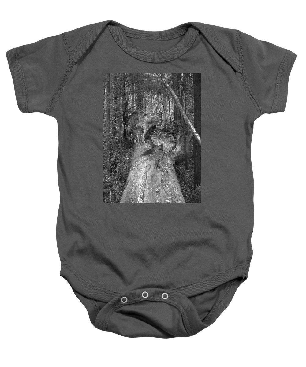 Landscape Baby Onesie featuring the photograph Big Basin 2 by Karen W Meyer