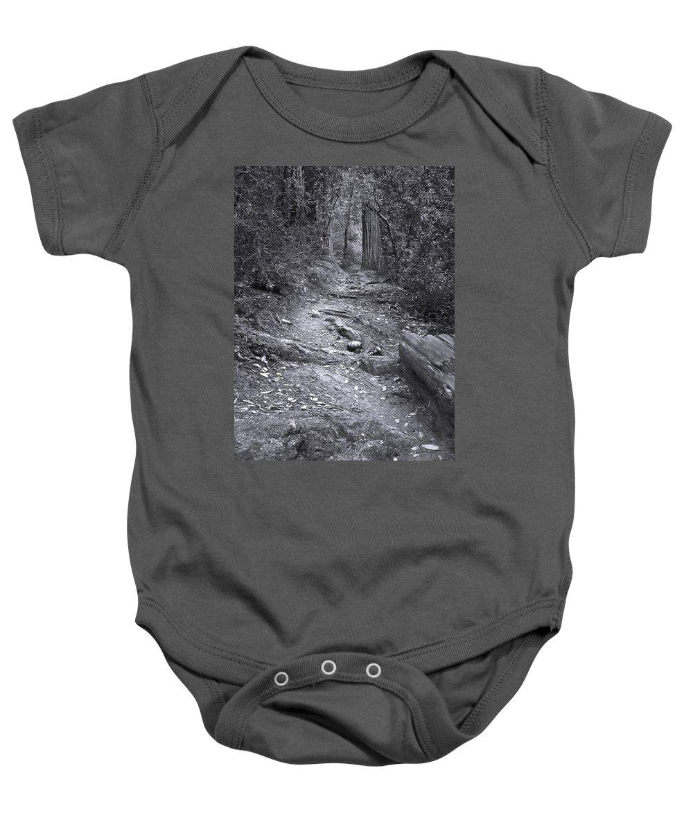 Landscape Baby Onesie featuring the photograph Big Basin Redwoods Sp 1 by Karen W Meyer