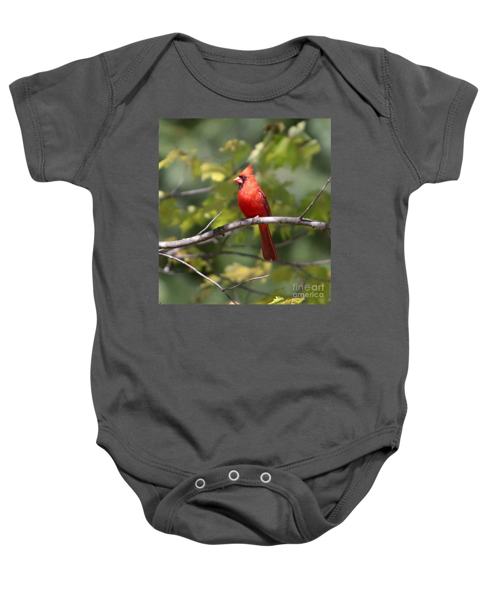 Cardinal Baby Onesie featuring the photograph Big Red by Robert Pearson
