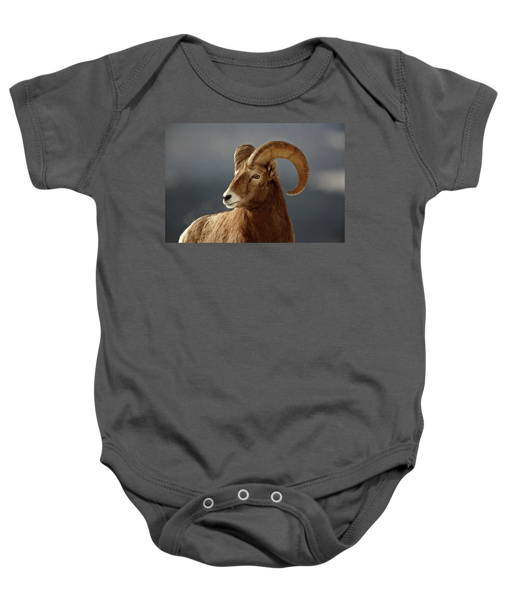 Rocky Mountain Baby Onesie featuring the digital art Bighorn Sheep In Winter by Mark Duffy