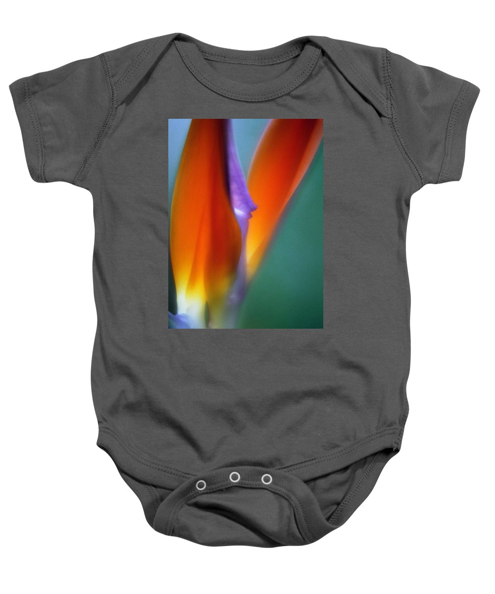 Macrophotography Baby Onesie featuring the photograph Bird Of Paradise 2 by Lee Santa