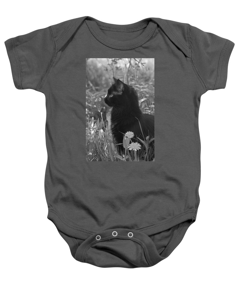 Cat Baby Onesie featuring the photograph Bird Watching by Karon Melillo DeVega
