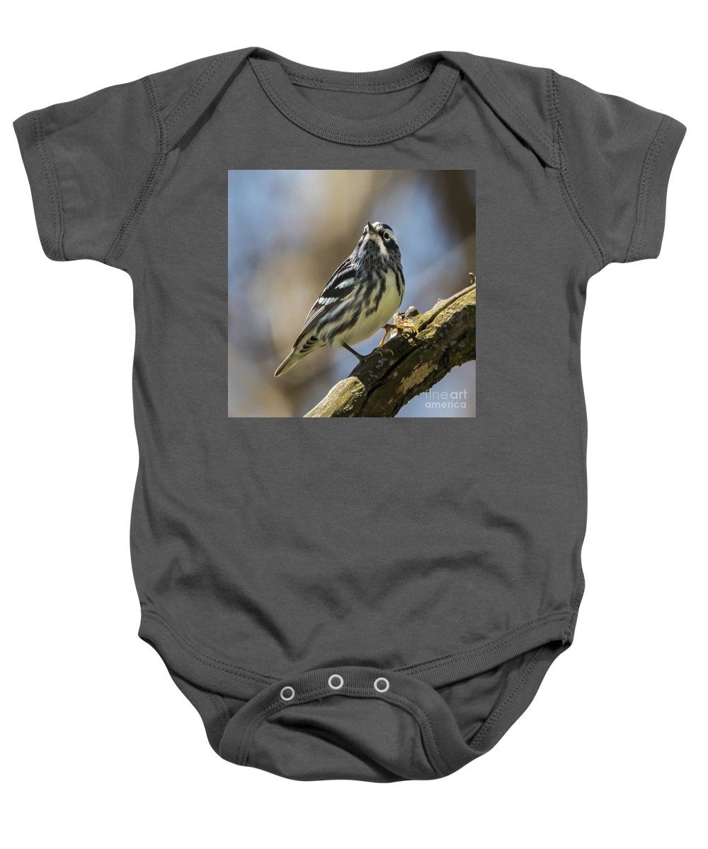 Warbler Baby Onesie featuring the photograph Black And White Warbler by Susan Grube