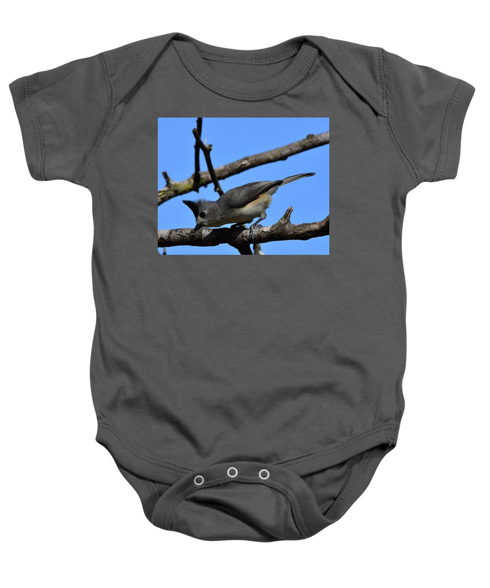 Black Baby Onesie featuring the photograph Black Crested Titmouse by Dwight Eddington