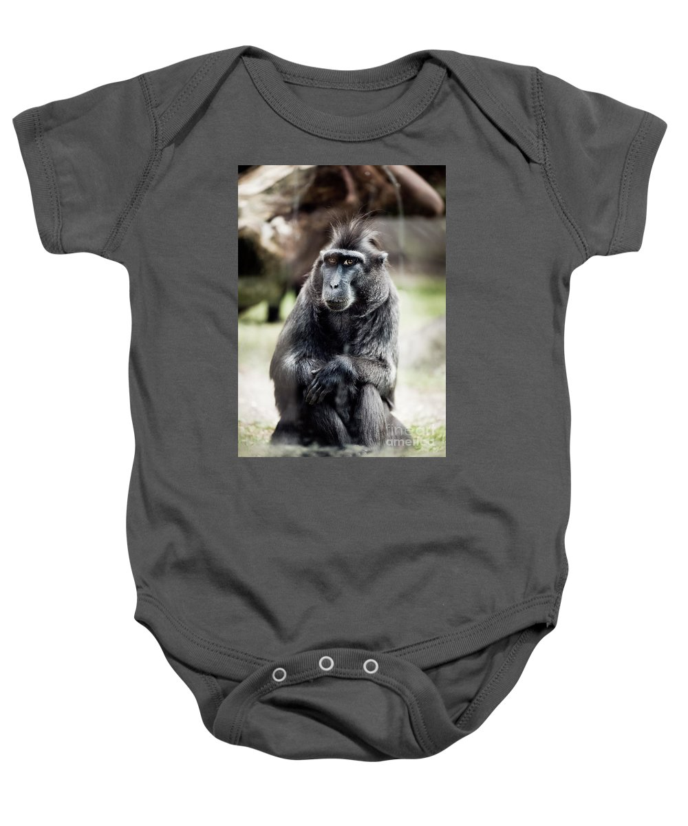 Macaque Baby Onesie featuring the photograph Black Macaque Monkey Sitting by Arletta Cwalina