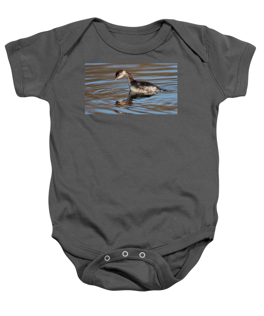 Black-necked Grebe Baby Onesie featuring the photograph Black-necked Grebe About To Dive by Bob Kemp