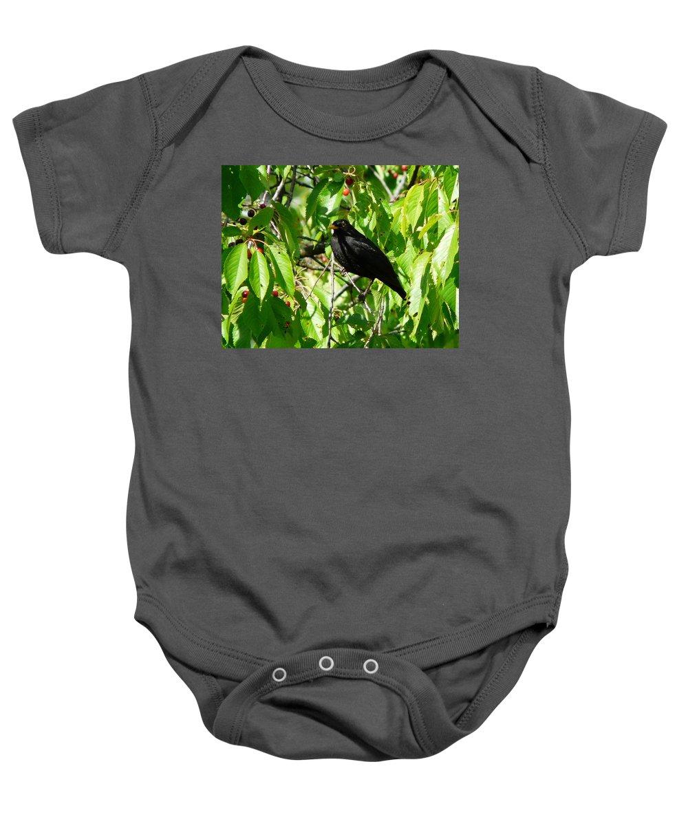 Bird Baby Onesie featuring the photograph Blackbird In The Cherry Tree by Valerie Ornstein