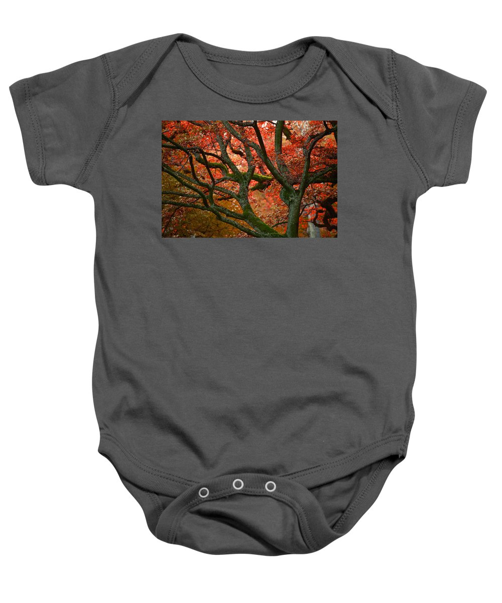 Red Baby Onesie featuring the photograph Blood Red Autumn Tree by Sandra Rugina