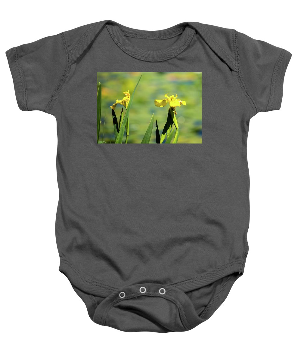 Green Lake Baby Onesie featuring the photograph Blooming At Green Lake by Robert Briggs