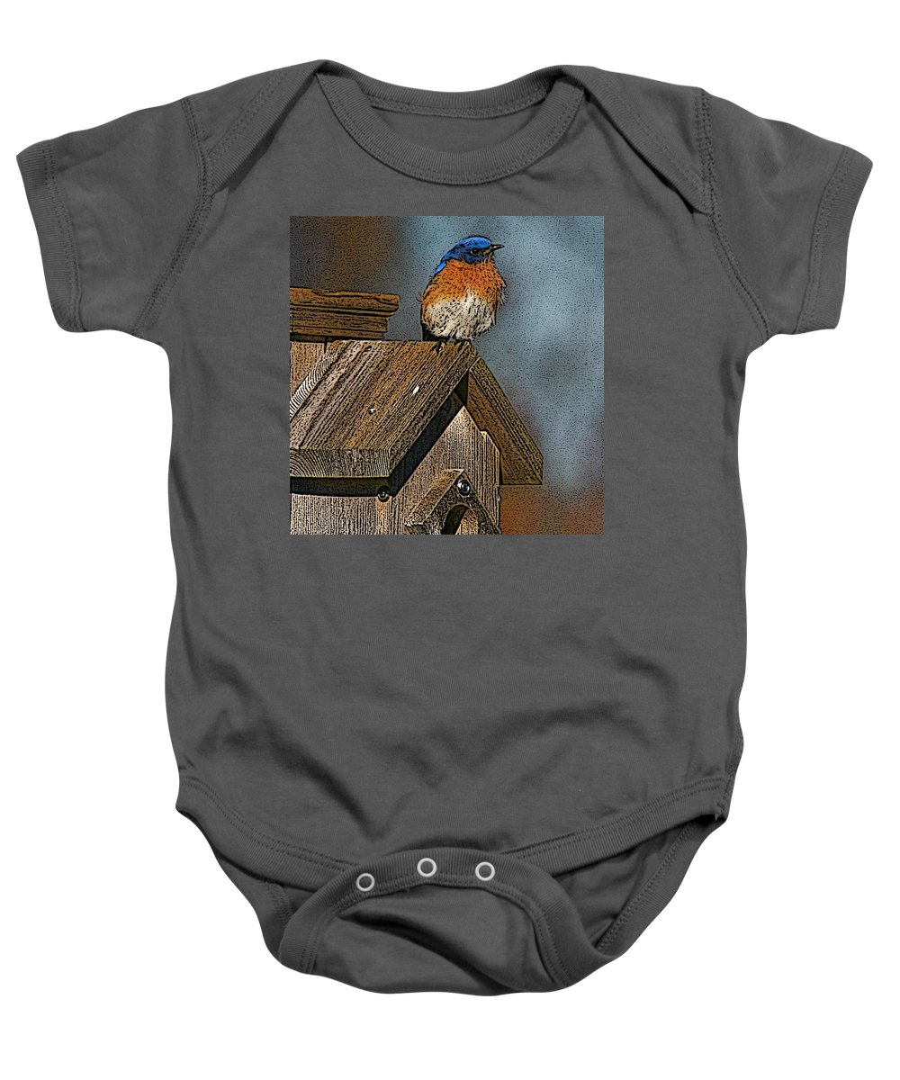 Blue Bird Baby Onesie featuring the photograph Blue Bird Songs by Robert Pearson