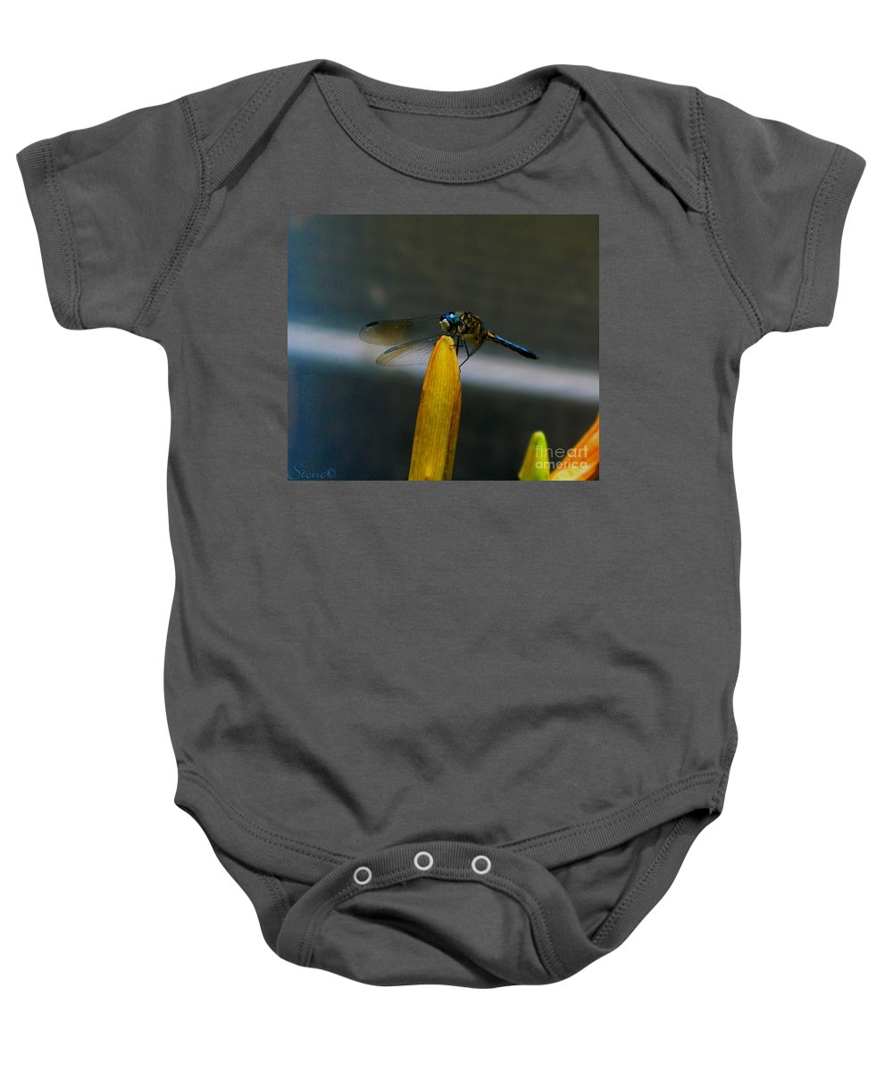 Dragonfly Baby Onesie featuring the photograph Blue Dhasher Dragonfly by September Stone