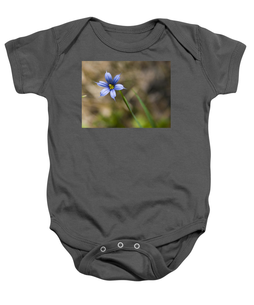 Flower Blue Grass Green Small Little Bright Color Colorful Yellow Flora Nature Baby Onesie featuring the photograph Blue-eyed Grass II by Andrei Shliakhau