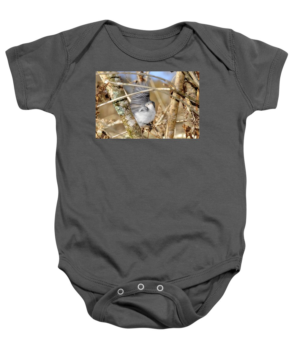 Warbler Baby Onesie featuring the photograph Blue Gray Gnatcatcher by David Lee Thompson