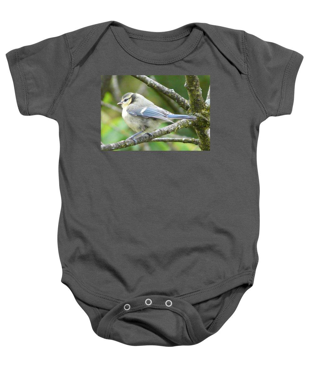 Bird Baby Onesie featuring the photograph Blue Tit by Valerie Ornstein