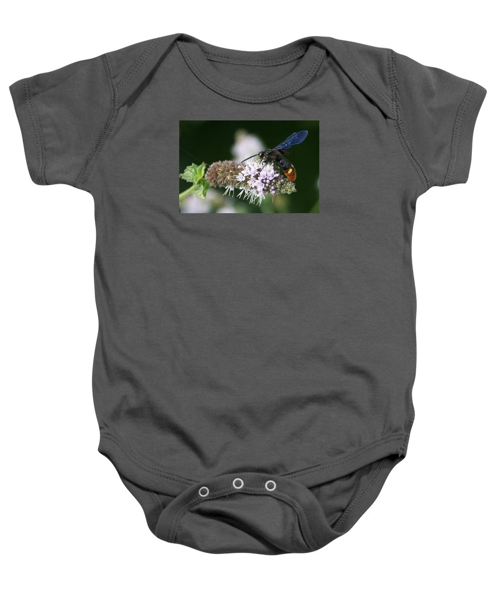 Wasp Baby Onesie featuring the photograph Blue-winged Wasp On Mint by Dawn Zemaitis