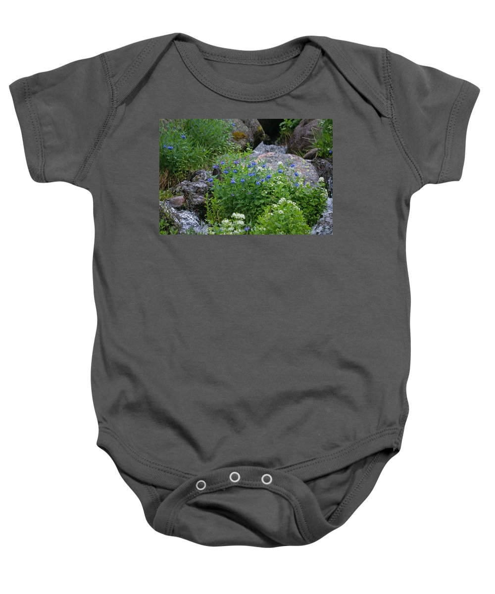Wildflowers Baby Onesie featuring the photograph Bluebells by Heather Coen